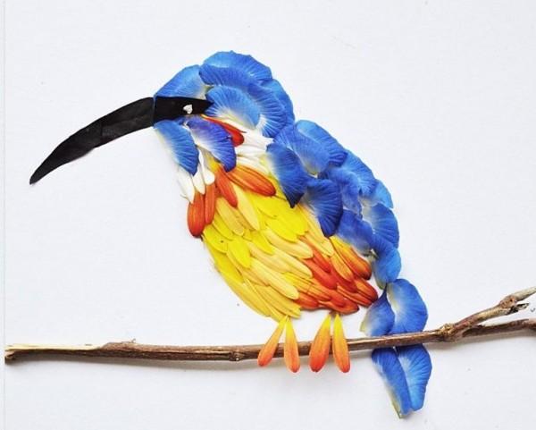 Exotic Birds (6)
