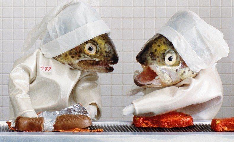 Fishy Art by Anne-Catherine Becker-Echivard