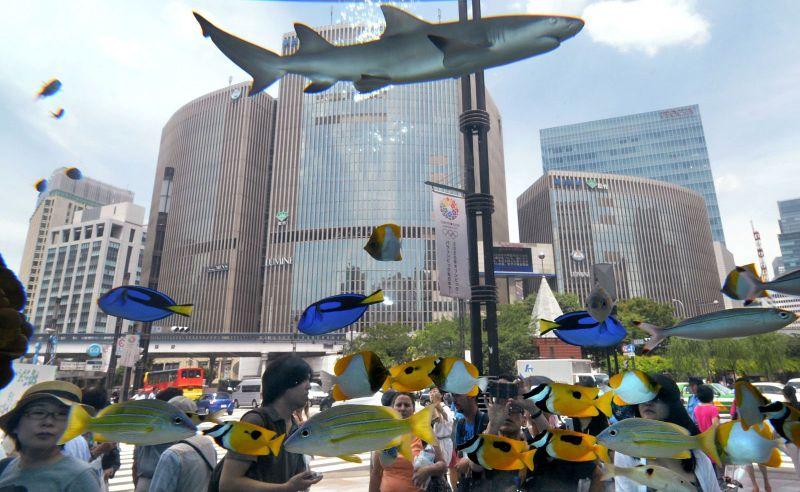 Passers-treated fish in the aquarium