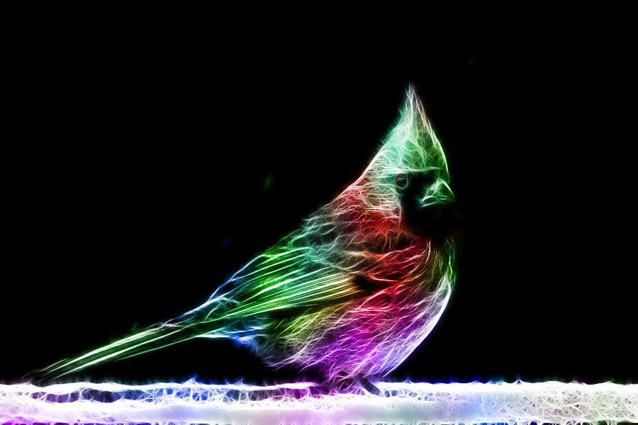 """Fractal LED-animals in the project """"Fractals"""""""