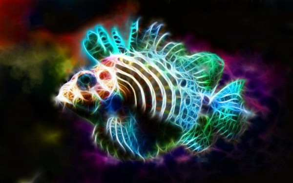 Animal Portraits as Electrifying Bursts of Color