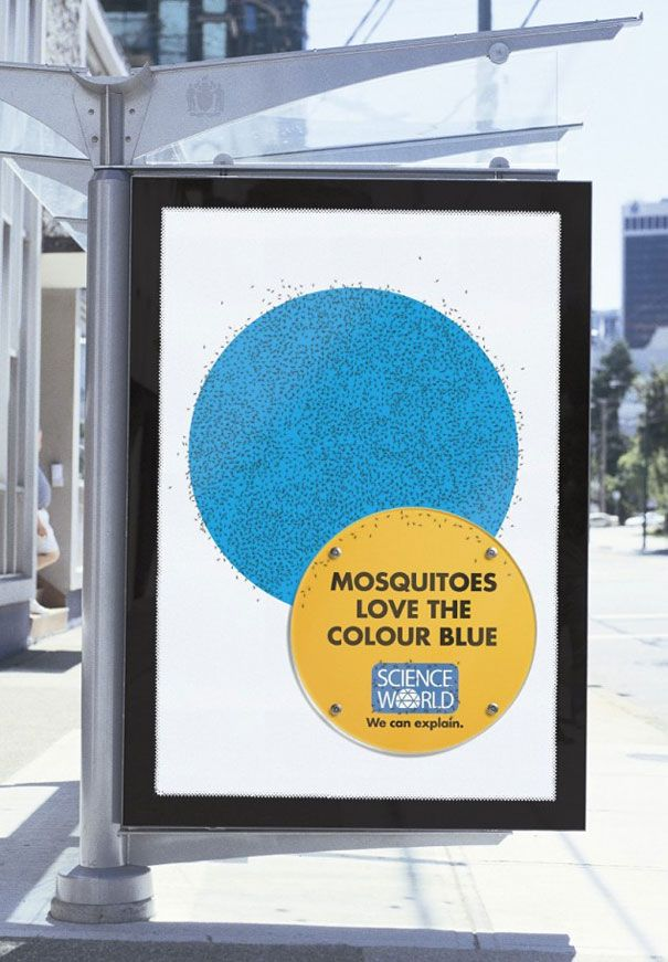 Mosquitoes love the color blue, We can explain