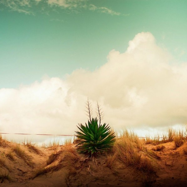 Wonderful Scenic Photographs by Andrew Cuba