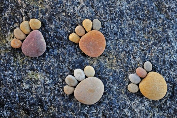 Traces of Stone by Iain Blake