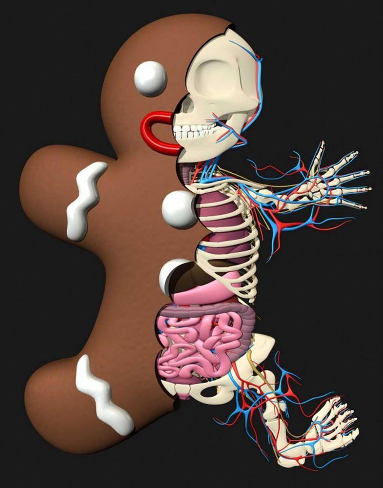 Bizarre Anatomical Toys by Jason Freeny