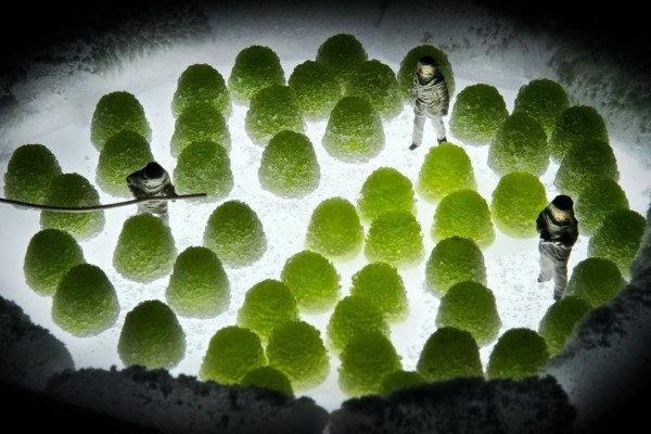 "Miniature World ""Minimize"" Photo Series by William Kass"