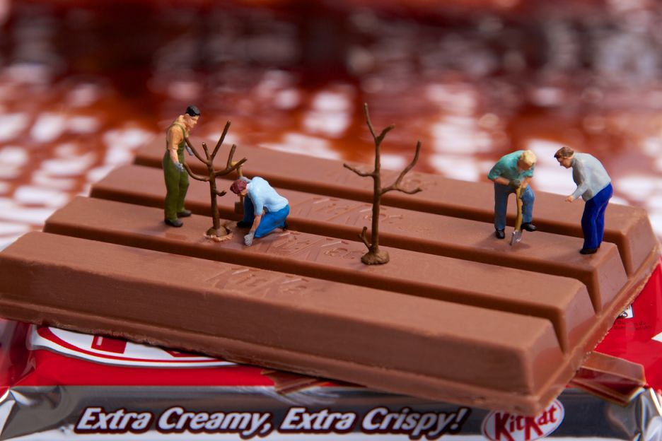 Tiny People in a Universe Made Of Food