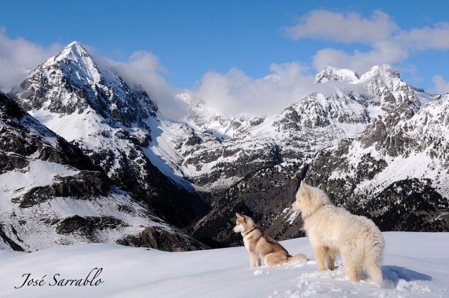 Wonderful Nature Photography