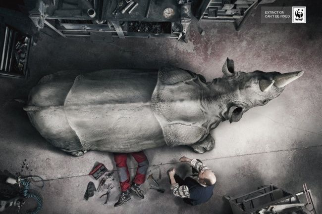 WWF - Extinction can not be Fixed