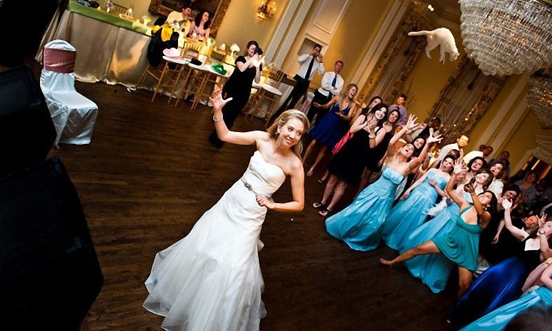 Meet the New Trend of Bride Throwing … Cats