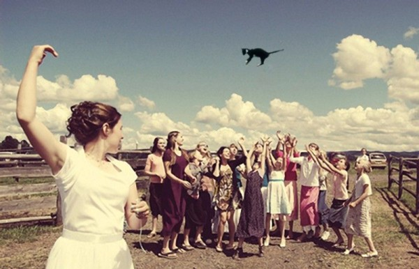 Brides Throwing Cats Instead of Bouquets