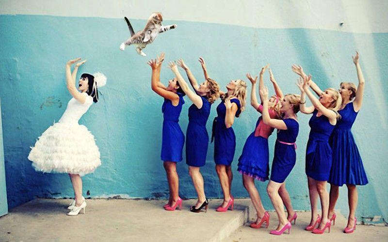 Bride-Throwing-Cats-9.jpg