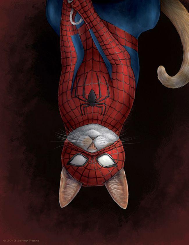 spideycatweb