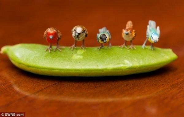 Tiny Figure of Birds and Animals