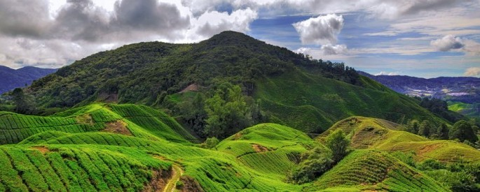 Incredible Landscape and Nature Photography by AlMuhammady