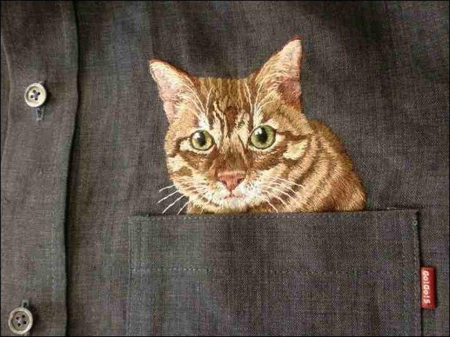 Internet Cats are Reborn as Embroideries Peeking out of Shirts