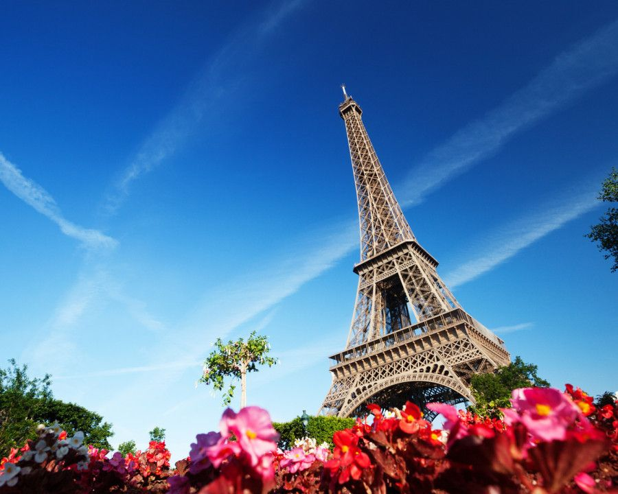 10. French Language