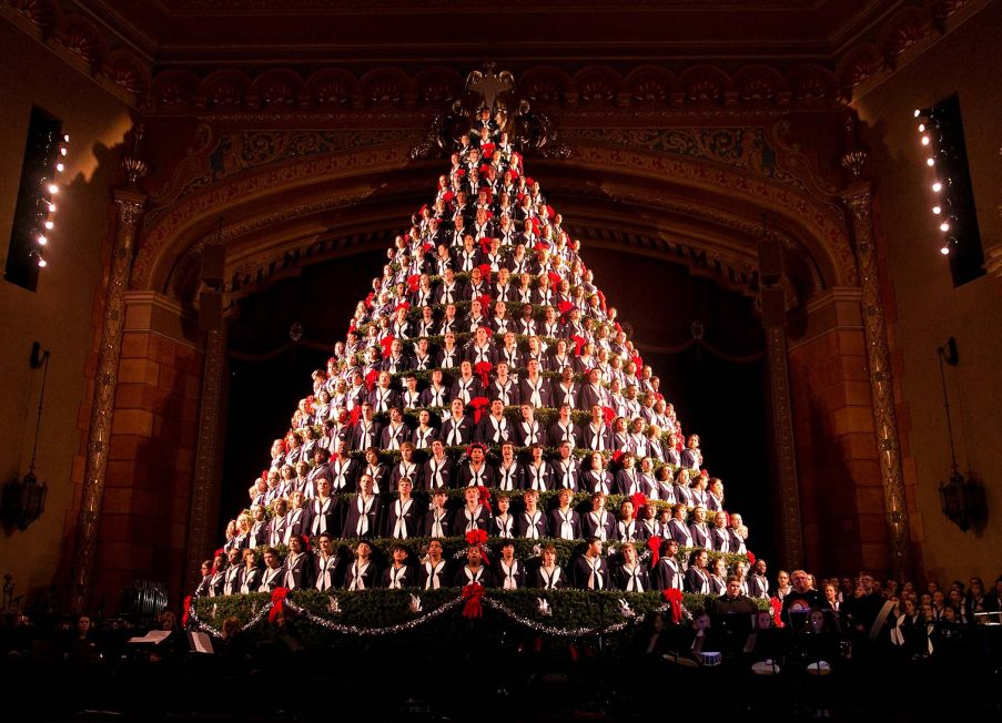 Live tree from the choir in 'Frauenthal Center', Muskegon, Michigan, USA