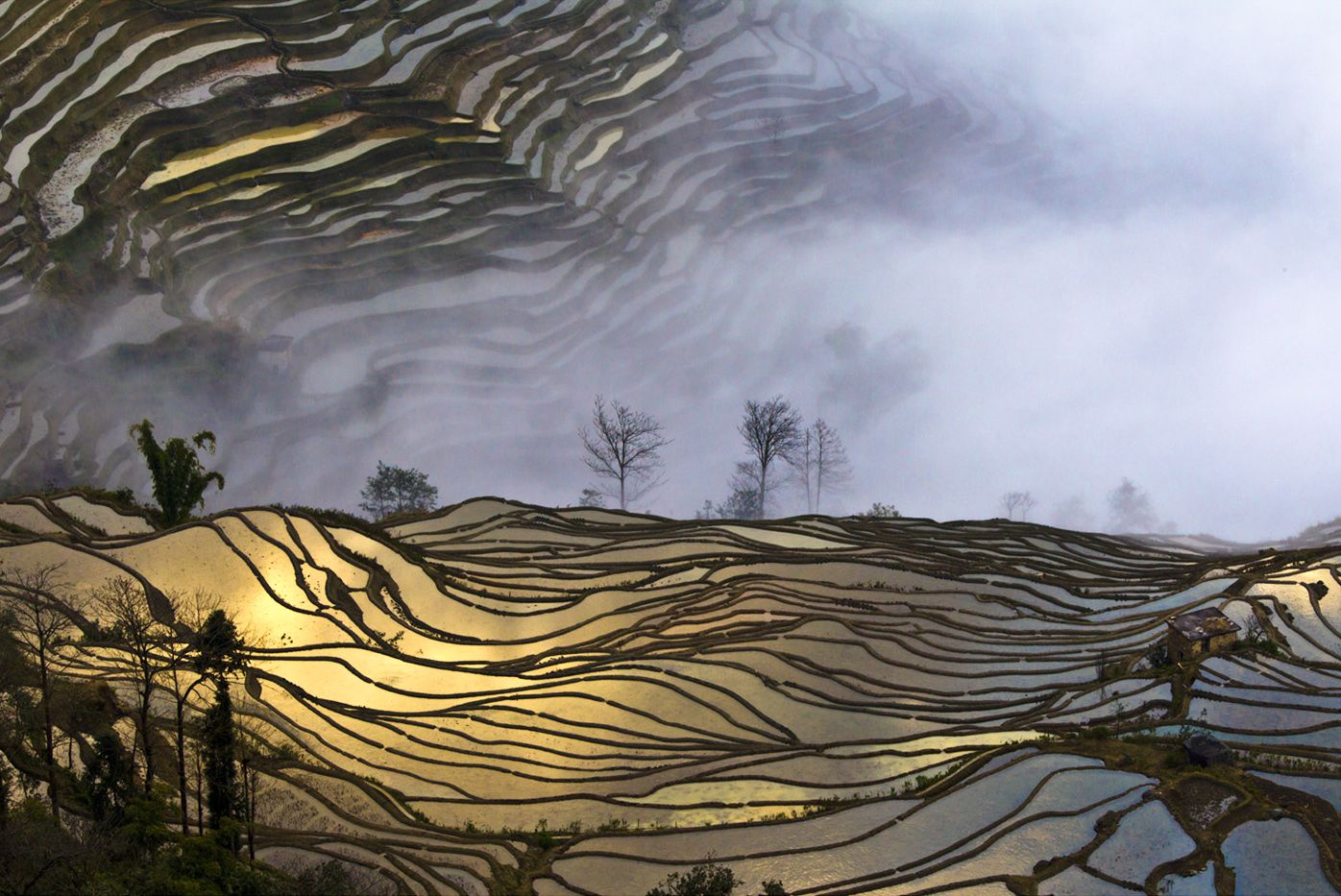 Absolutely Dramatic Nature Photography by Cho Hyung Jae