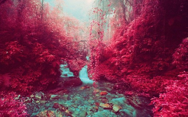 This stream in Nepal