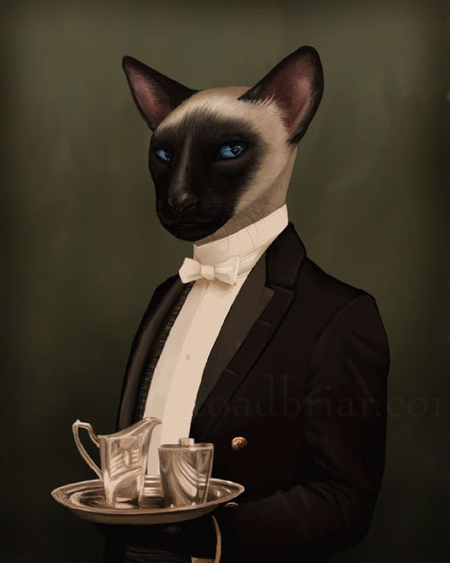 Thomas, a servant at the manor