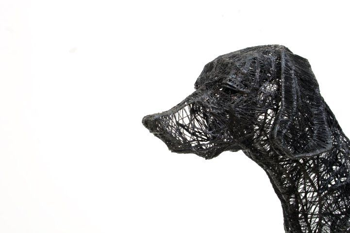 Sculptures Made out of Wire