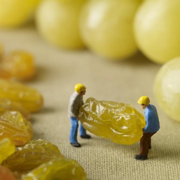 Impressive Minimiam Food Project by Akiko Ida and Pierre Javelle