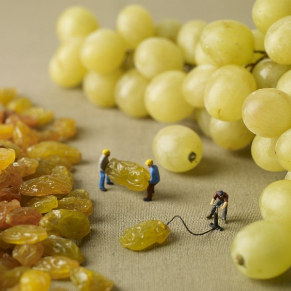 Little People in the World of Food
