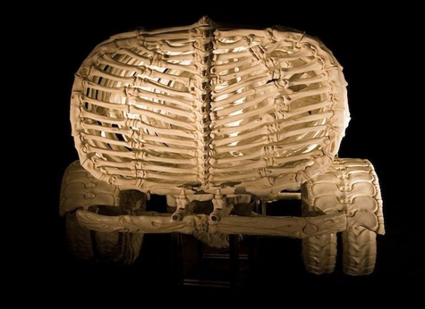 Amazing Skeleton Art of Jitish Kallat