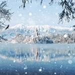 20 Amazing Enchanting Winter Landscapes