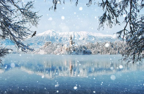 Enchanting Winter Landscapes