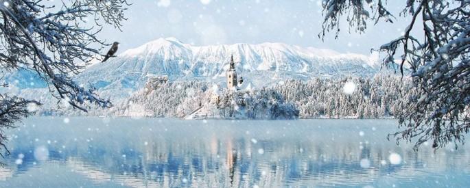 Enchanting Winter Landscapes