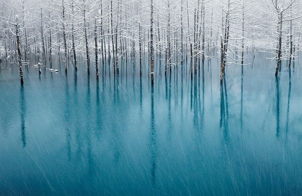 Amazing Enchanting Winter Landscapes