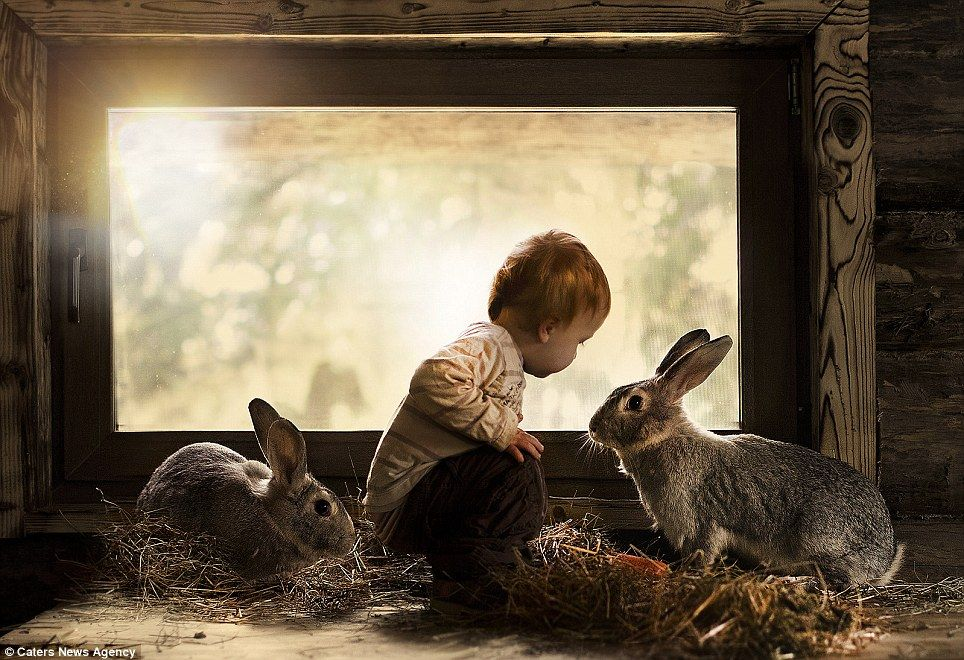Mother Photographs Her Kids and Farm Animals