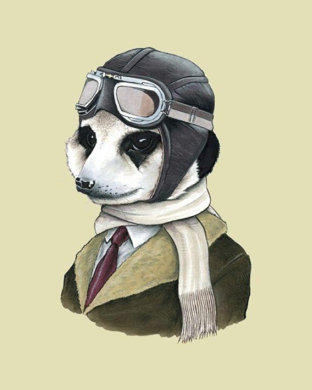 Meerkat art print by Ryan Berkley