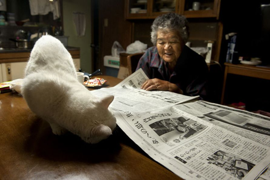 Grandma and Her Cat Are The Cutest Best Friends Ever