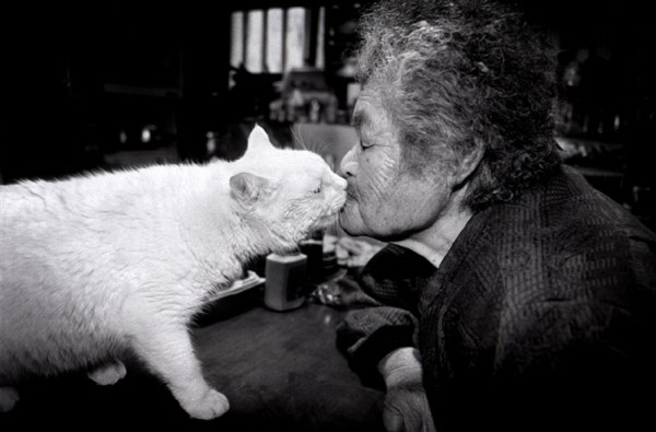Cutest Best Friends Ever: A Cat and a Grandmother