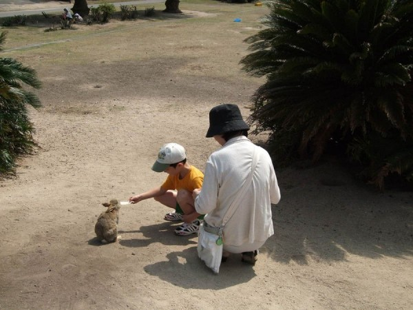 Rabbit Island ÅŒkunoshima