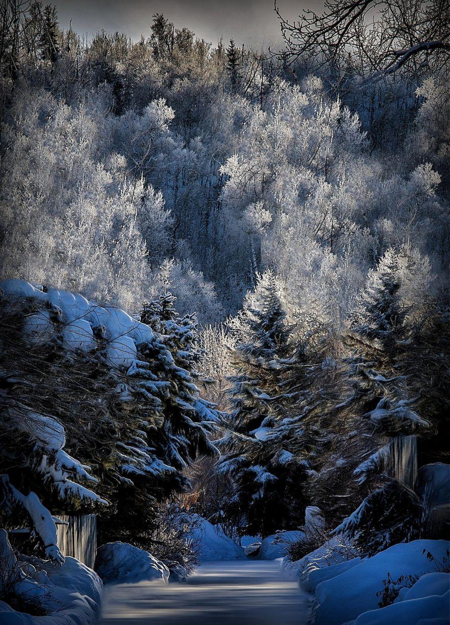a snowy frosty morning in Sleepy Hollow