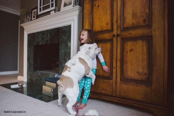 The Heart Touching Friendship of a 4 Years Little Girl and Her English Bulldog