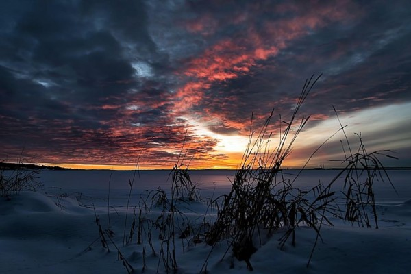 Lake Wabamun Sunrise