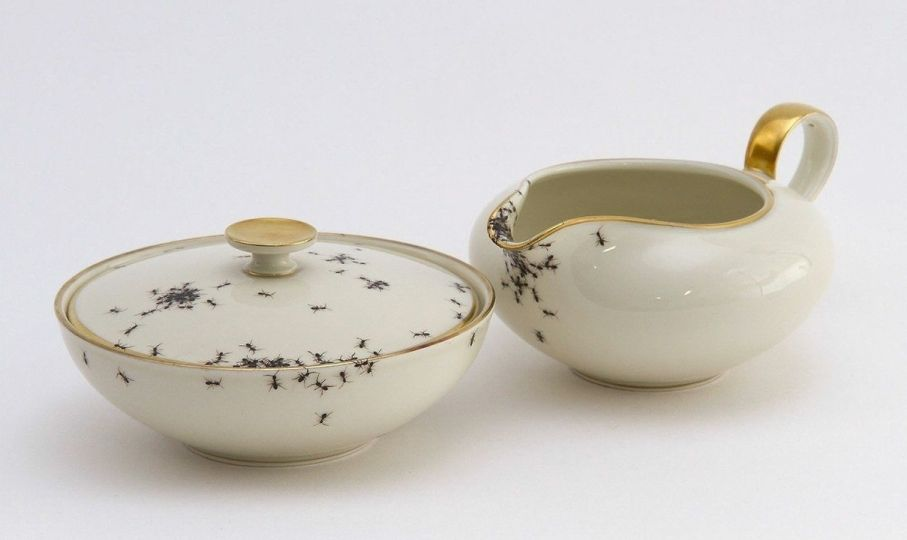 Porcelain Dishes Covered in Ants