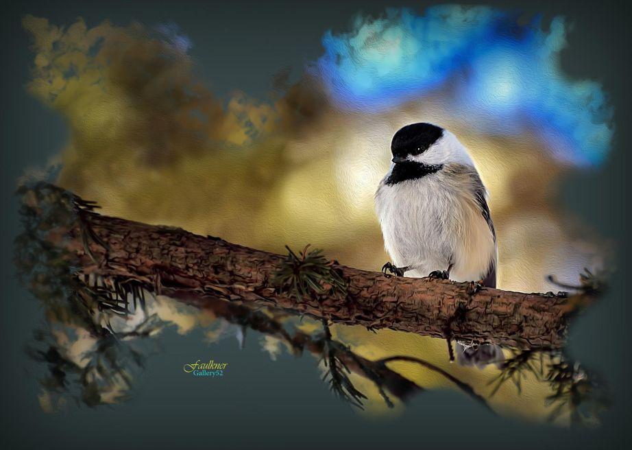 Sparrow by Reg Faulkner