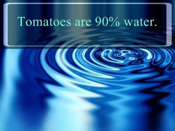Must Know Interesting Facts about Water