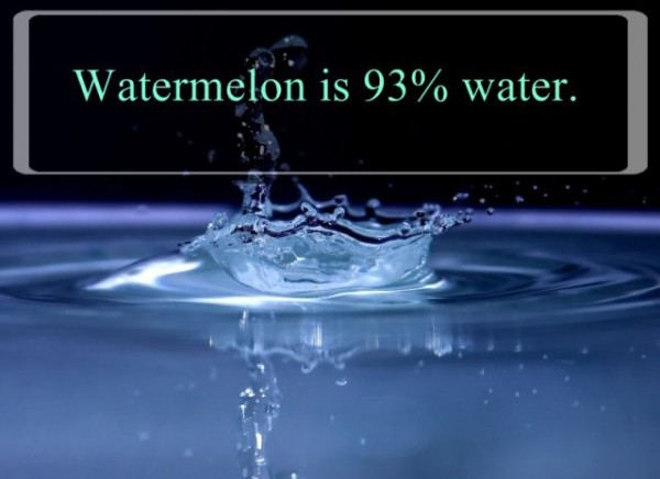 Interesting Facts about Water