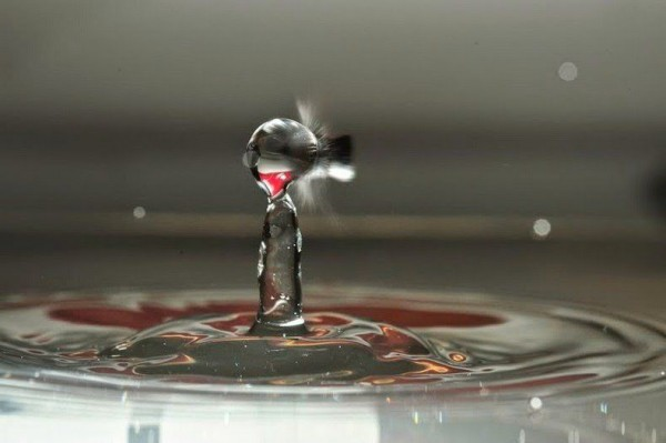 Fascinating High Speed Bullet Photography by Alexander Augusteijn