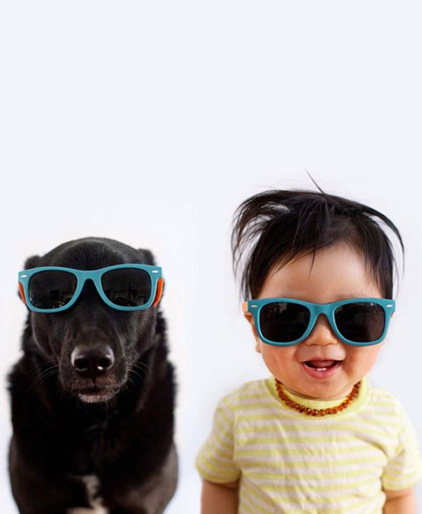 Adorable Jasper and rescue dog Zoey Photography by Grace Chon