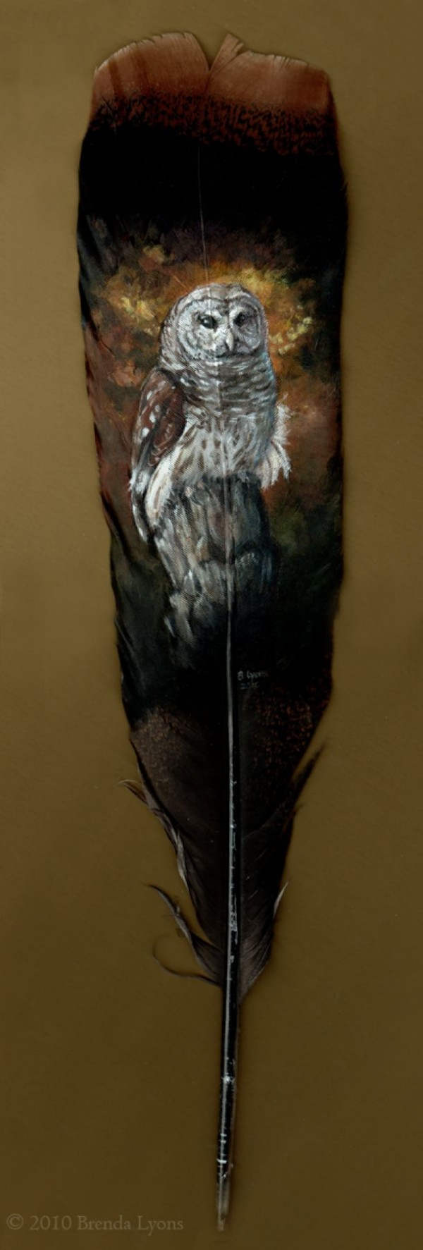 Emrys feather