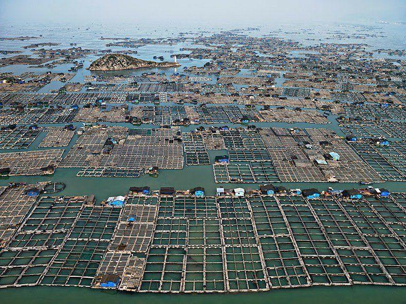 Luoyuan Bay, China