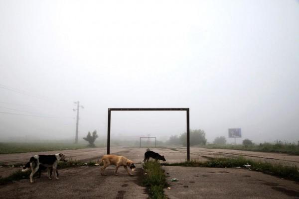 Lipljan Kosovo. June 3, 2014